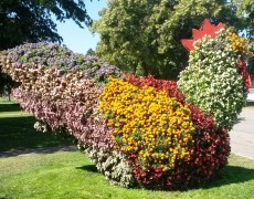 AWO-Großenritte besuchte Ega-Park in Erfurt