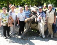 AWO-Großenritte – eine Busfahrt in den Sagen-Harz