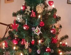 Weihnachtsfeier der AWO-Großenritte
