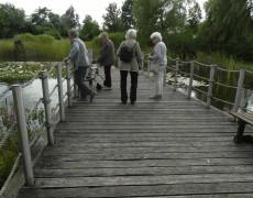 AWO Fuldatal: Ausflug an den See in Calden