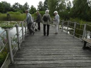 AWO Fuldatal: Einige Damen vor dem Café mit Blick auf den See und die Seerosen